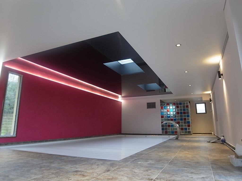 Piscine, spa, Peinture décorative murale avec plafond tendu satiné et plafond tendu laqué noir, Loire Atlantique, 44