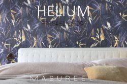 Helium de chez Masureel